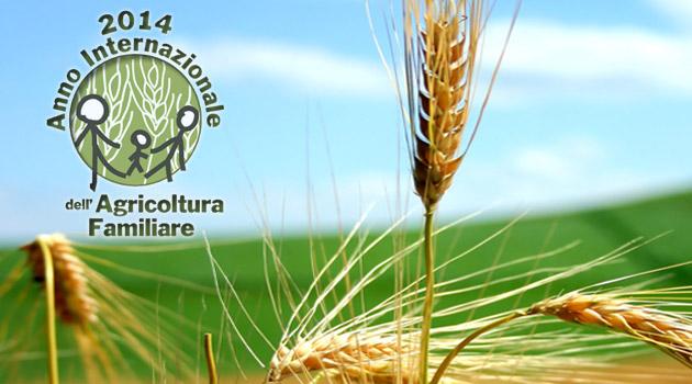 agricoltura-familiare-2014-