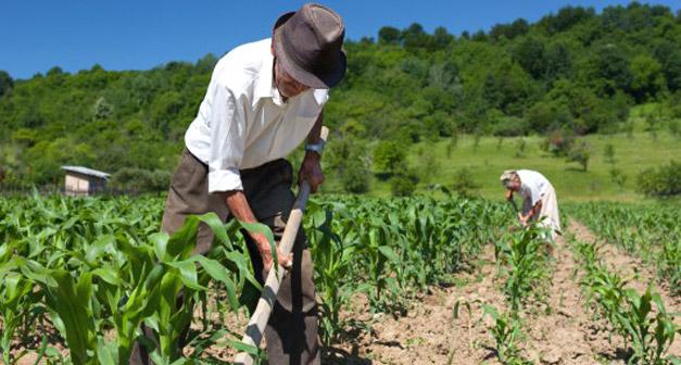 agricoltura-italiana-embargo