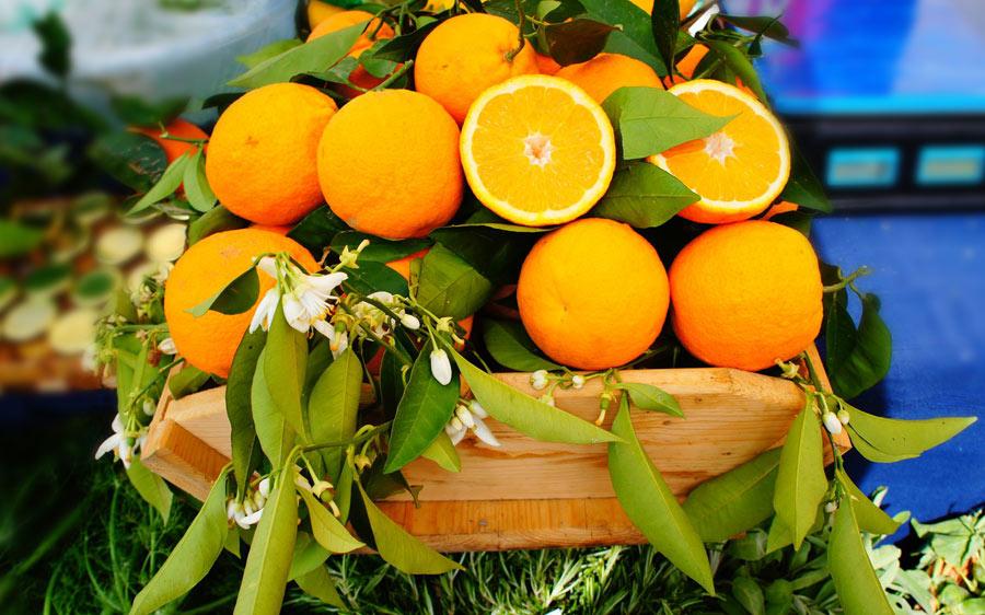 arance-corigliano-calabro-biennale