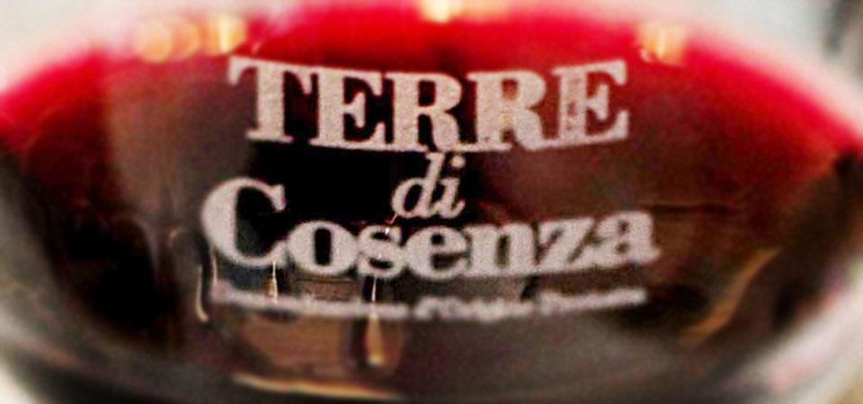 terre-di-cosenza-vinoit.it-dop-bruzia-vinitaly-wine